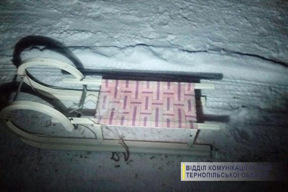 НаТернопільщині дівчина загинула під час катання насанях, прив'язаних домашини